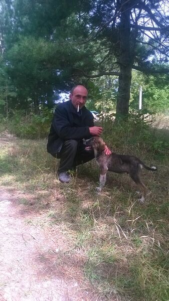 Фото мужчины ваван, Марнеули, Грузия, 45